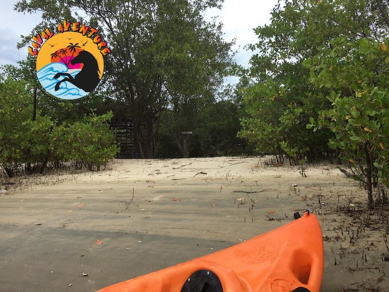 Les excursions en canoés